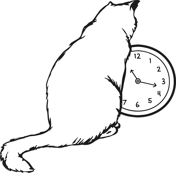 Intestacy - cat looking at a clock.